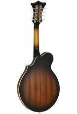 Tanglewood Electric Mandolin, TWM F VS E