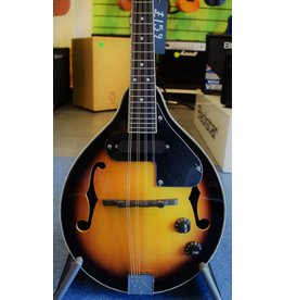 Countryman Electric Mandolin, TCM20E