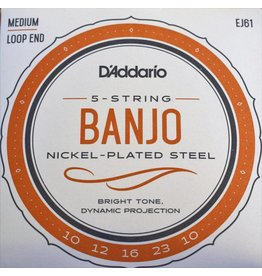 DAddario 5-String Banjo, Nickel-Plated Steel, Loop End, EJ61
