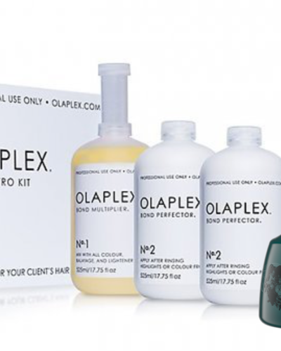 Olaplex®  Recovery Treatment Plus