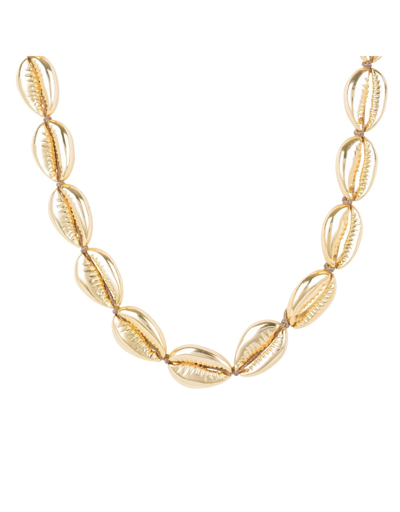 Shell Choker Gold