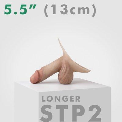 Emisil 4&1 Prosthetic StP2
