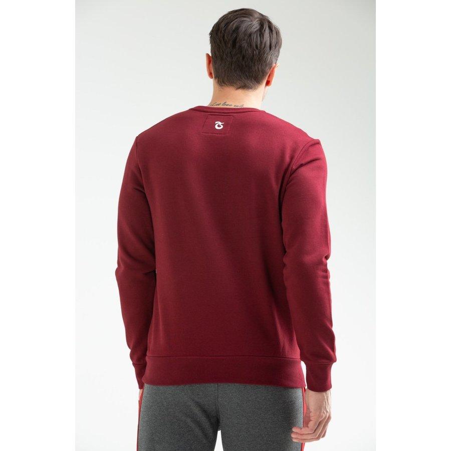 Trabzonspor Sweater Logo