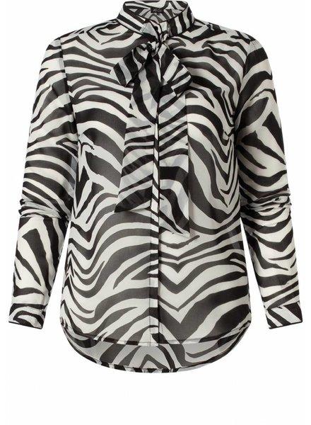 Mariel zebra