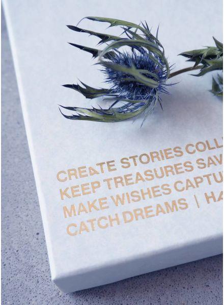 Haas memory cards blue marble