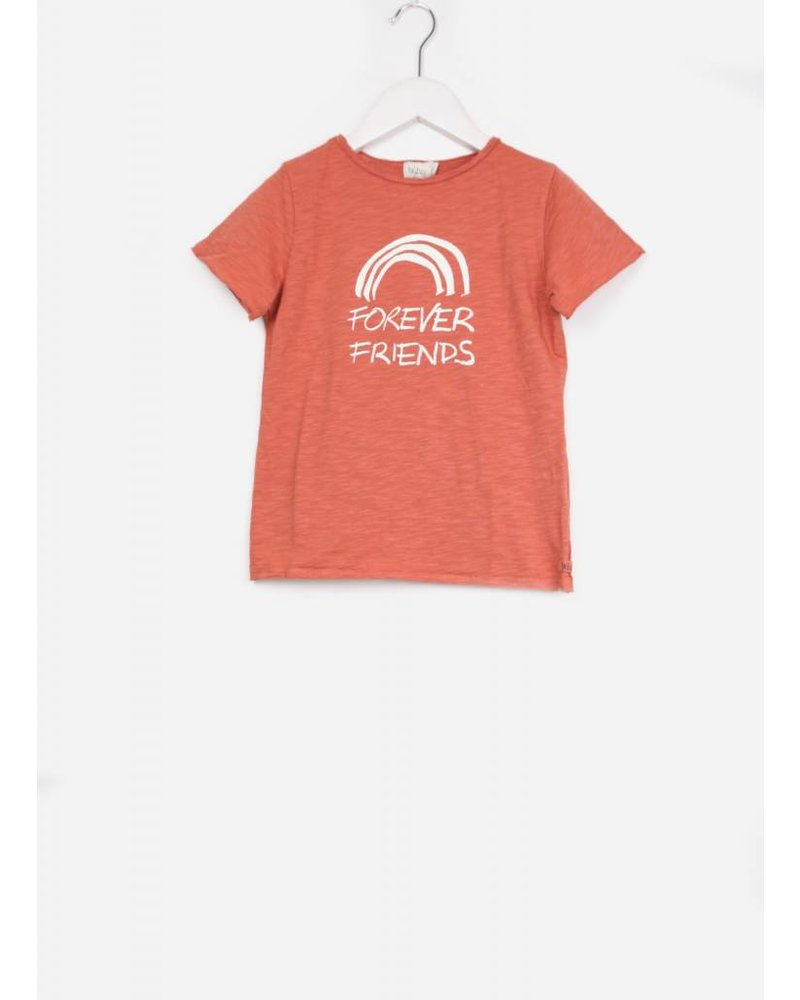 Buho cesar friends boy tshirt terracota