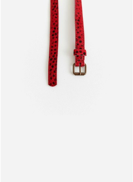 Bellerose capu92 belts - display a