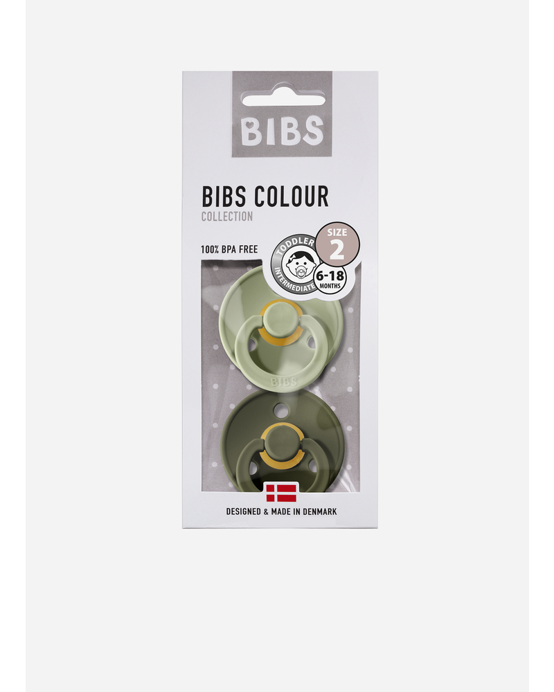 Bibs fopspeen natuurrubber sage - heather green