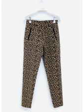 Les Coyotes De Paris nima leopard