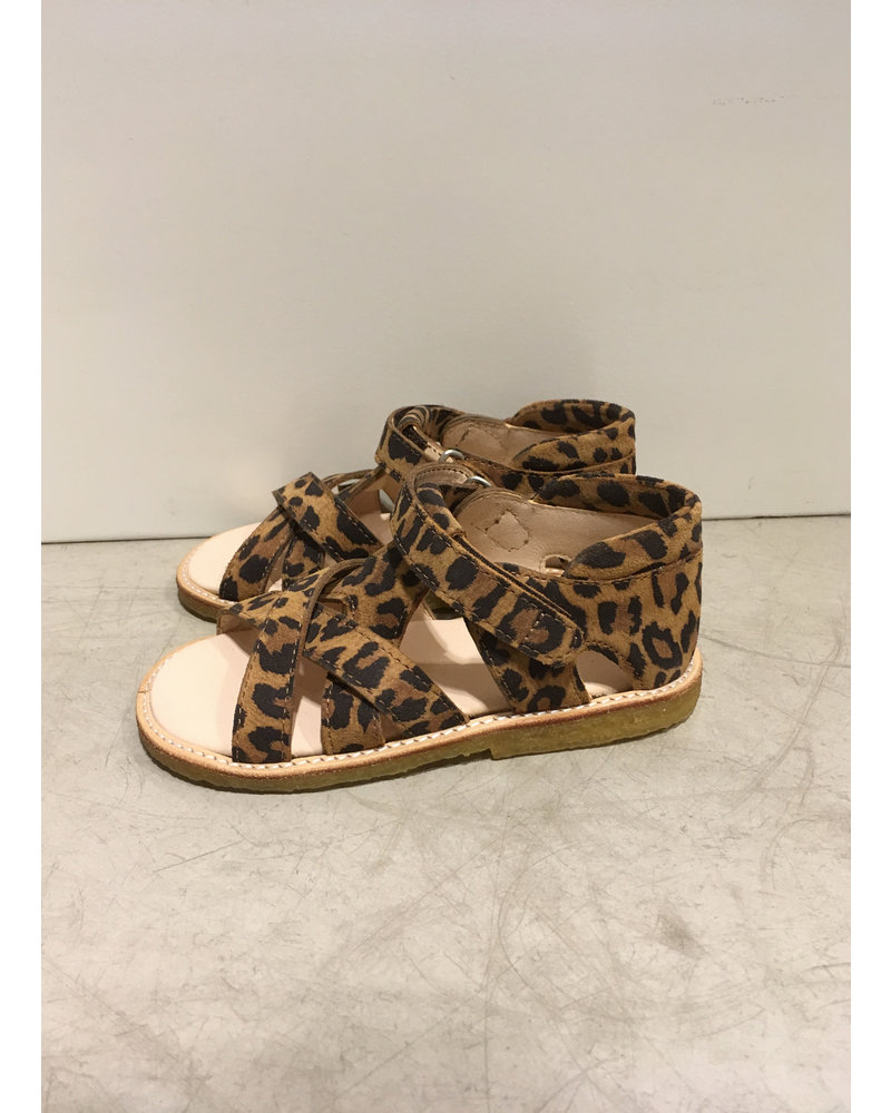 Angulus starter sandal with velcro closure - leopard