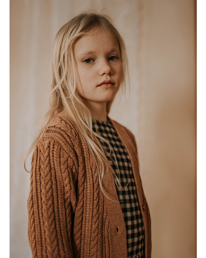 Repose 42. knit cardigan v neck cable - rusty marble