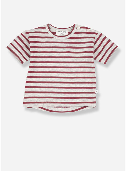1+ In The Family vence short sleeve t-shirt - red