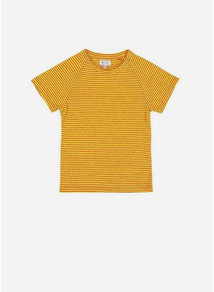 Morley harvey stripe yellow boys tshirt