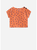 Bobo Choses dots terry short sleeve sweatshirt
