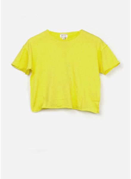 Morley labrador jersey lemon shirt boys shirt