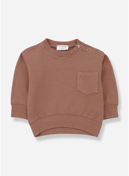 1+ In The Family salardu sweatshirt toffee