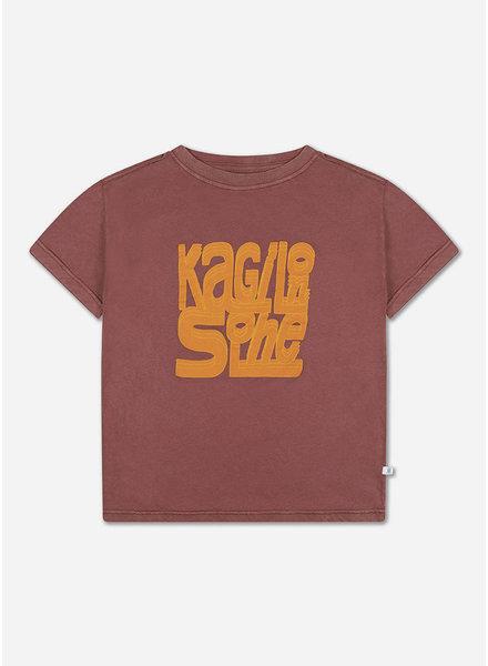 Repose tee shirt washed brick