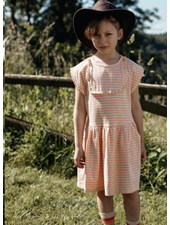 Wander & Wonder dakota dress - pink stripe