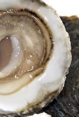 3 platte Zeeuwse oesters  Nr 3 natuur