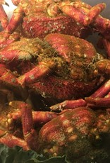 Noordzeekrab  gekookt +/- 800 gr