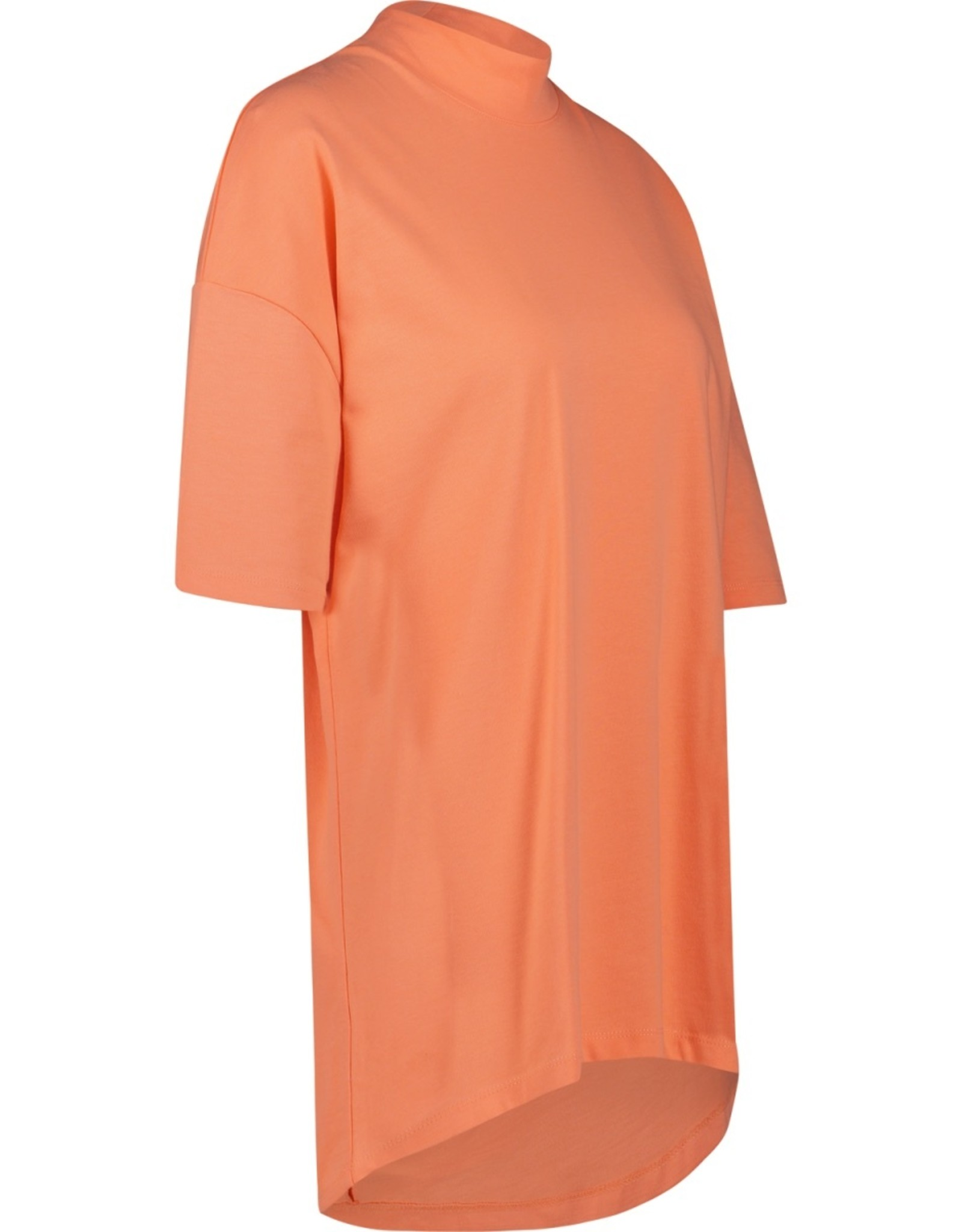 Raizzed Raizzed Hamira Oversized T-shirt