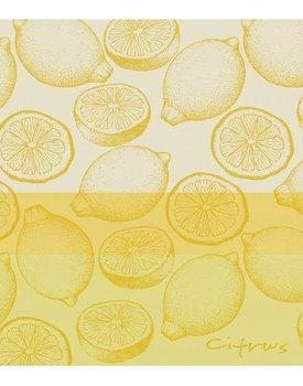 DDDDD theedoek citrus  60x65 yellow per stuk