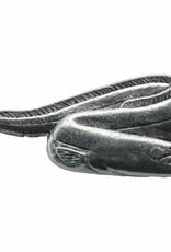 DTR Eel