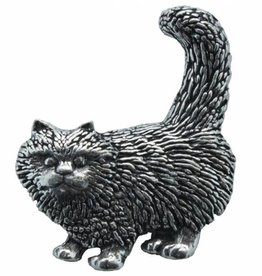 DTR Cat standing
