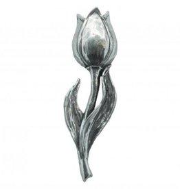 DTR Tulip