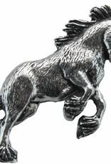 DTR Steigerend paard