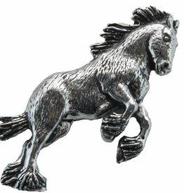 DTR Shire horse
