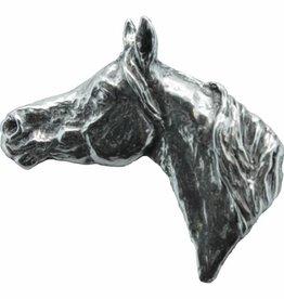 DTR Arab horse