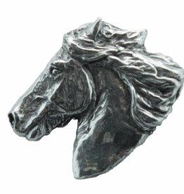 DTR Ijslander horse
