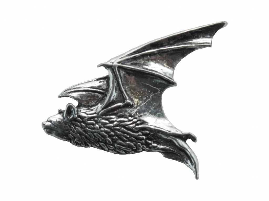 DTR Pipestrelle bat