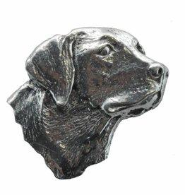 DTR Labrador's head