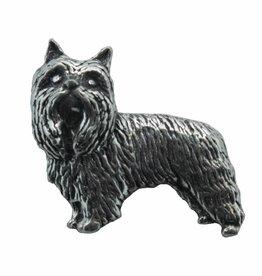 DTR Yorkshire Terrier