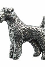 DTR Fox Terrier