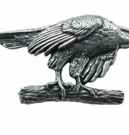 DTR Hawk on branch