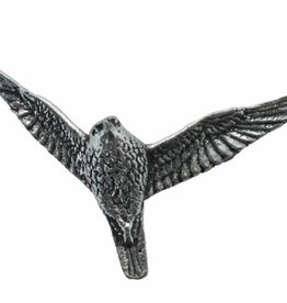 DTR Hawk