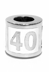 Vierdaagse Bedel 40 km charm (silver)