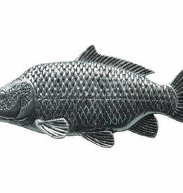 DTR Common carp