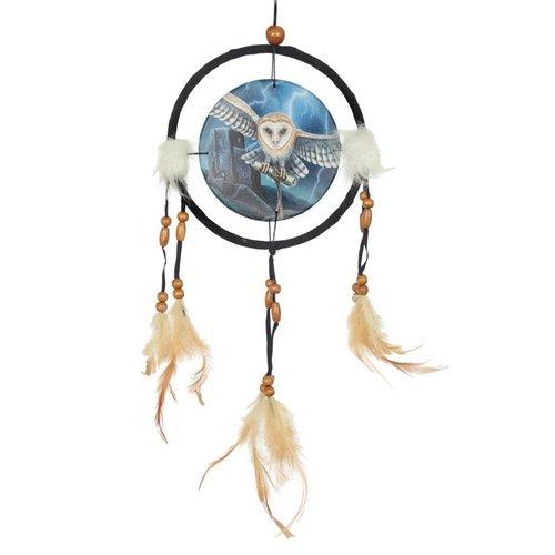 Lisa Parker Dreamcatcher Heart of the Storm Owl