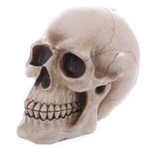Novus Fumus Skull piggy bank