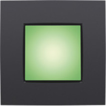 Oriëntatieverlichting 900lux, groen licht