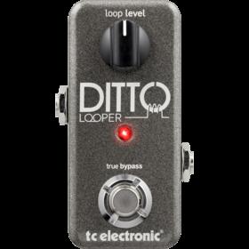 TC Electronic - CREA DITTO LOOPER
