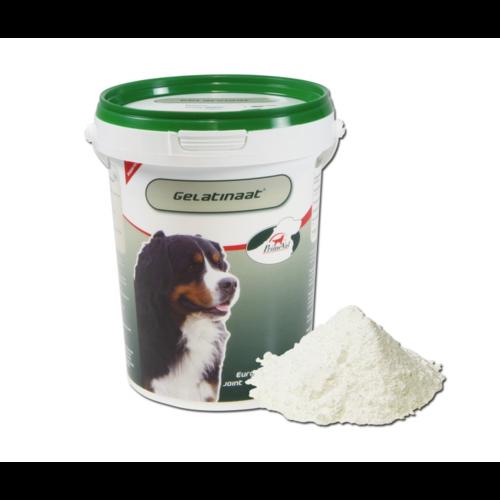 Primeval Gelatinaat - DOG