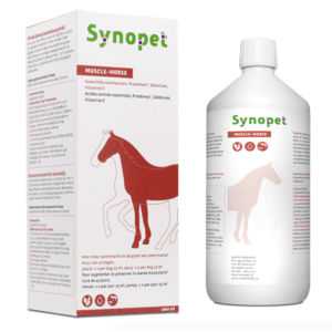 Synopet Muscle-Horse