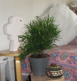 Boho bedsheet,  Tabelcloth, colourful  home