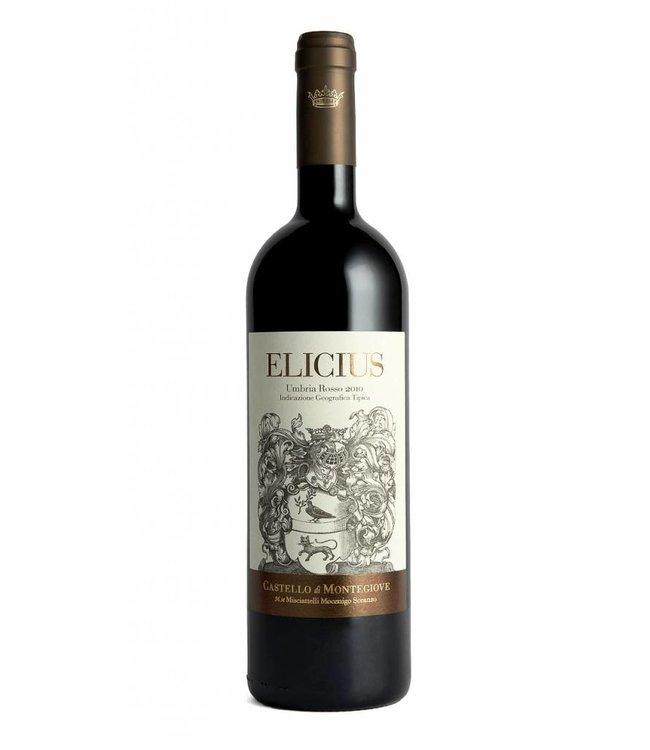 Castello di Montegiove 'Elicius' Rosso Umbria IGT (2012/2013)