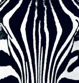 Fotobehang Black & White I - Poster XXL - 175 x 115 cm - Multi